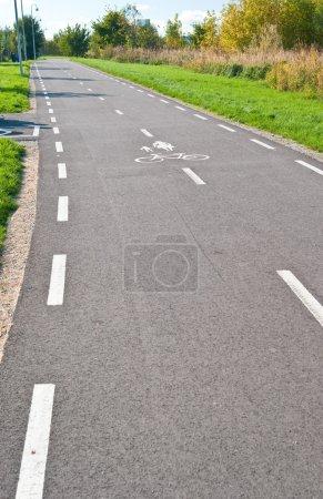 Photo pour Route asphaltée pour piétons et vélos dans le parc - image libre de droit