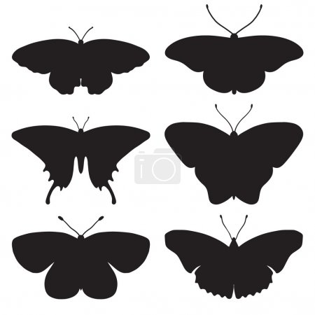 Black silhouettes of butterflies