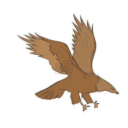 Photo pour Aigle planant brun - image libre de droit