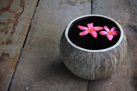 Plumeria flower floating in the ancient jug