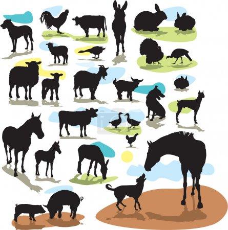 Set vector silhouettes farm animals