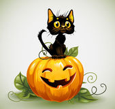 A cute black cat on a Halloween pumpkin