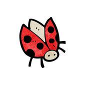 Red Ladybug Beetle