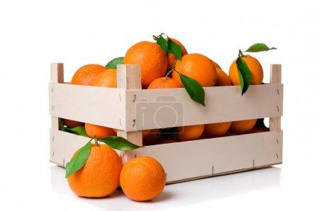 Photo pour Fruits oranges fraîches et mûres à feuilles dans une caisse en bois, isolé sur fond blanc - image libre de droit