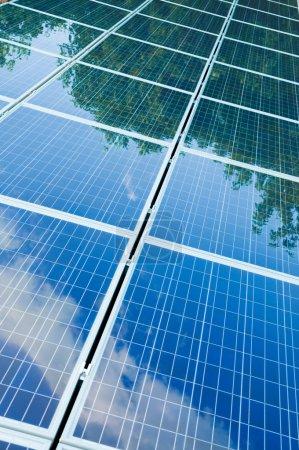Foto de Árboles verdes y cielo azul reflejo sobre paneles solares. ir verde con energía renovable! - Imagen libre de derechos