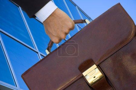 Legal adviser bag