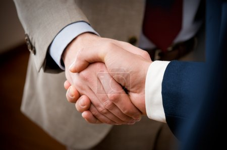 Two professional businessman giving handshake in t...