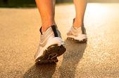 Closeup Of Joggers Leg