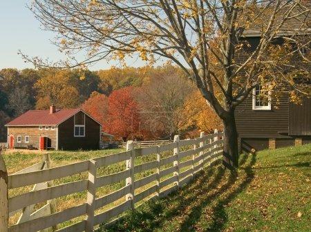 Fall Farm Fence