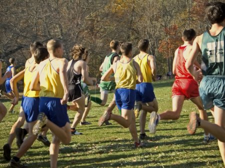 Cross country runners in a race in Holmdel Park in...