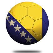 Fotbal Bosna a Hercegovina