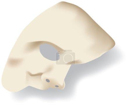 White phantom of the opera half face mask isolated on white back