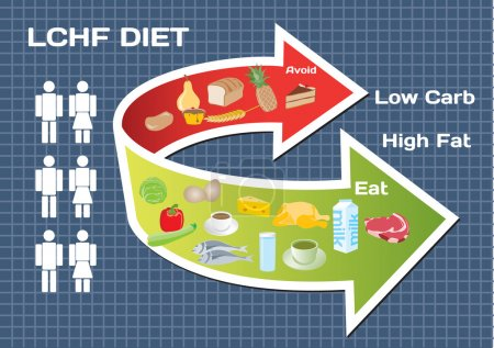 Illustration for Diet Low Carb High Fat (LCHF) infographic - Royalty Free Image