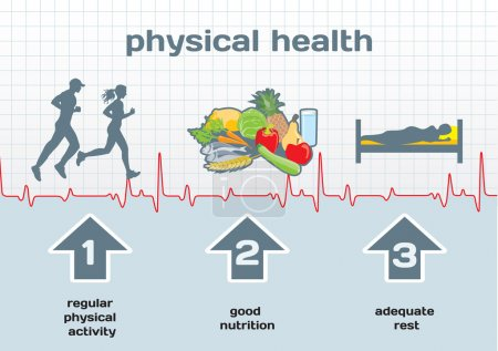 Illustration for Physical Health diagram: physical activity, good nutrition, adequate rest - Royalty Free Image