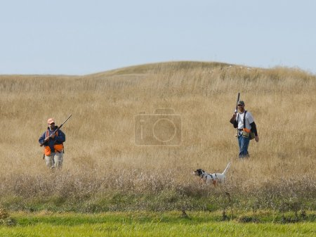 Pheasant hunting in the Autumn...