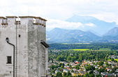 Alps from castle