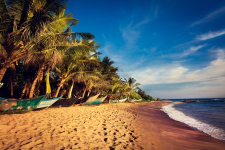 Boats on a Tropical Beach, Mirissa, Sri Lanka