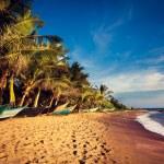 Boats on a Tropical Beach, Mirissa, South Sri Lank...