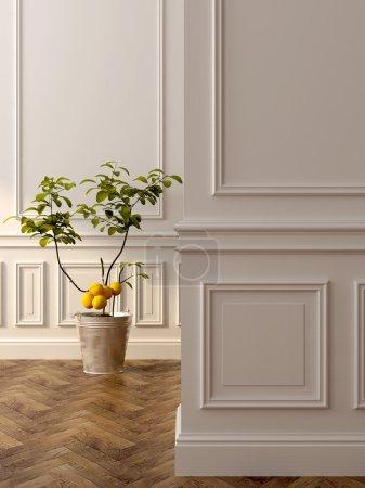 Photo pour Un beau citronnier à l'intérieur classique - image libre de droit