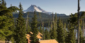 Long Panoramic View of Trees Amoung Cabin Rooftops