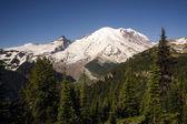 Trail High On Burroughs Mountain Cascade Range Mt. Rainier Background