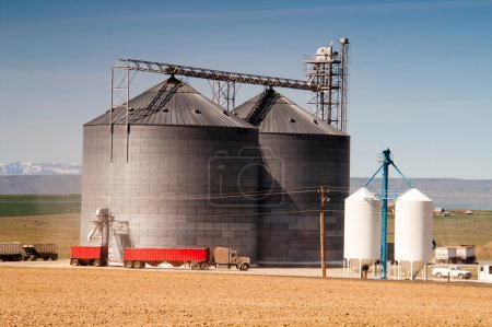 Agricultural Silo Loads Semi Truck With Farm Grown Food Grain
