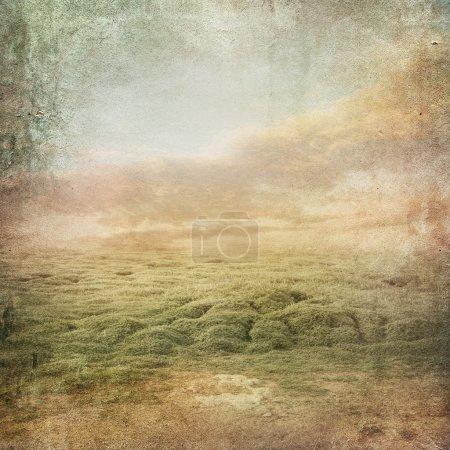 Photo pour Fond paysage vintage avec champ de trèfle - image libre de droit