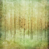 Vintage forest landscape background