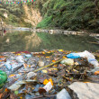 Plastic Contamination into Nature. Garbage and bot...