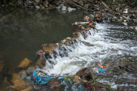 Environmental pollution in the Himalayas. Garbage ...
