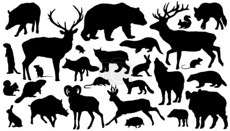 Illustration for Twenty-seven forest animal silhouettes on the white background - Royalty Free Image