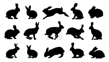 Rabbit silhouettes on the white background...