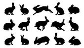 Rabbit silhouettes on the white background