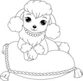 Glamorous poodle coloring page