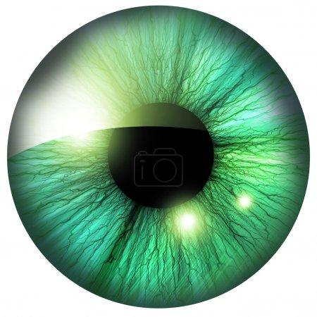 Photo pour Iris humain avec quelques reflets et réflexions - image libre de droit