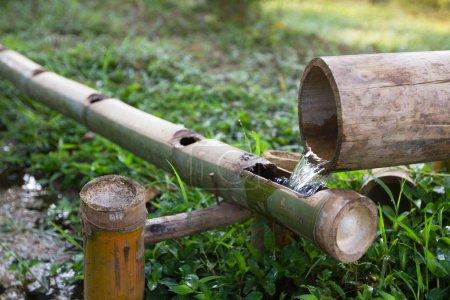 Foto de Sistema de riego ecológico bambú - Imagen libre de derechos