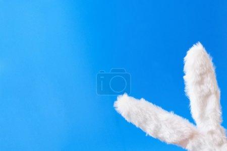 Bunny ears and clear sky