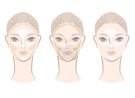 Highlighting and shading area chart showing to contour corrective face shape. For other variation, check my portfolio.