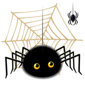 Cartoon spider looking up a tarantula on cobweb