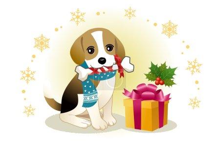 Beagle dog biting ribboned bone with christmas present box