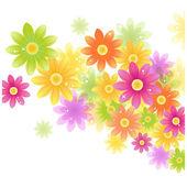 Vector Gerbera flower background