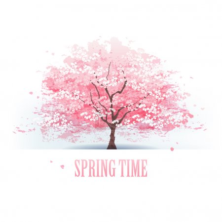 Illustration for Isolated beautiful cherry blossom tree. File contains Gradients, Transparent, Blending tool, Gradient Mesh. - Royalty Free Image