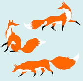 Three red foxes in motion