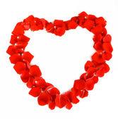 Květy růže srdce nad bílá. Valentýna. Láska