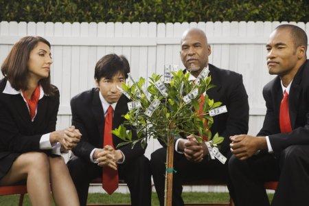 Multi-ethnic businesspeople looking at money tree