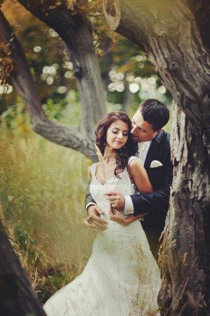 Photo pour Couple marié embrassant, marié et mariée - image libre de droit