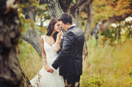 Photo pour Couple marié dans la forêt embrassant - image libre de droit