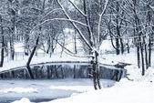 Ne na rybníčku v zimě