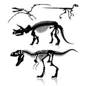 Vector Illustration: Dinosaurs and Fossils