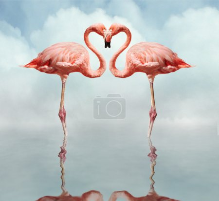 Pink flamingos making a heart shape in reflection ...